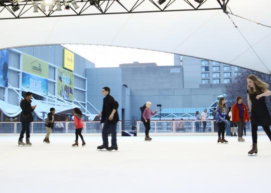 Skaters on the Ice Terrace